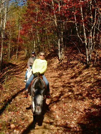 Nantahala Village Riding Stable