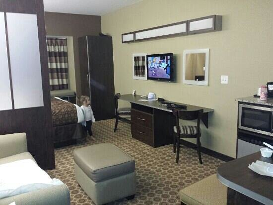 Microtel Inn & Suites by Wyndham Dickinson: Looking into the room from the entrance
