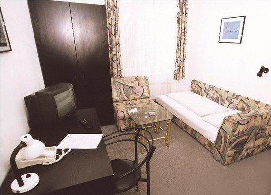Hotel Goldener Baer: Room