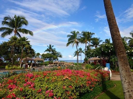 The Westin Maui Resort & Spa: les espaces verts