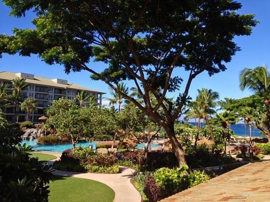 The Westin Maui Resort & Spa: vue de mon studio