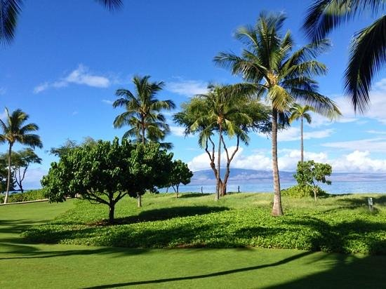 Westin Maui Resort And Spa: le parc en bord de plage