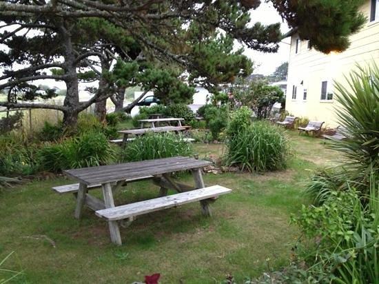Delicate Palate Bistro : Garden