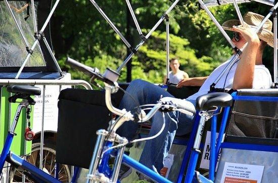 Peter Pen Tours of Central Park: Central Park Pedicab