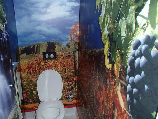 Queenstown Holiday Park & Motel Creeksyde : its an adventure just going to the loo!