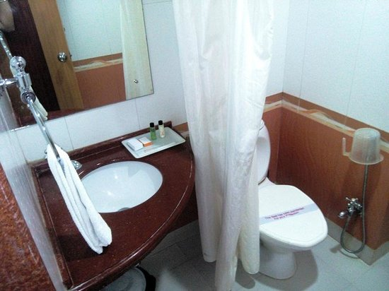Hotel Shakti International: Toilet , Clean but Small