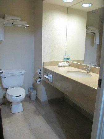 Holiday Inn Tampico Altamira: Bathroom