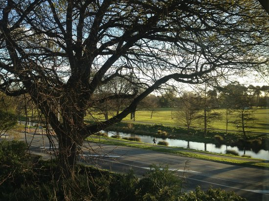 The George Christchurch: View to Hagley Park from the room