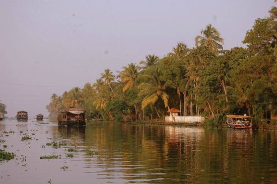 Punnamada Resort: View from the houseboat