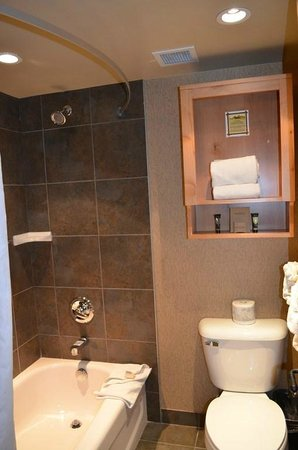 Fox Hotel & Suites: Bathroom