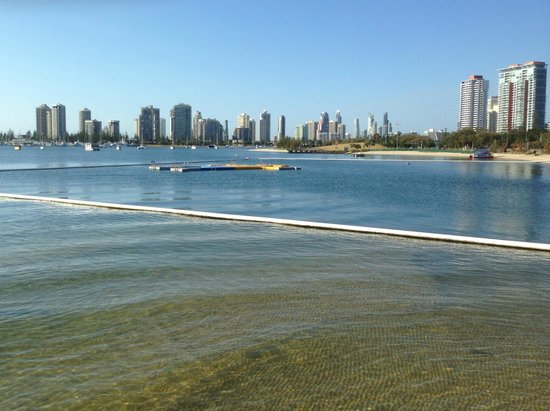 Rays Resort Apartments : Specially designed swimming areas at Southport on the Gold Coast - Tony Scott