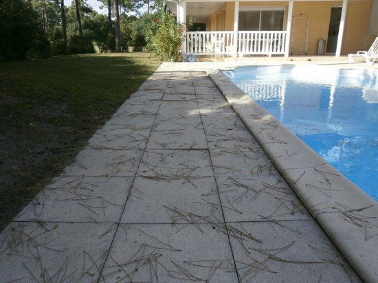 ESTIVEL - Villas Eden Parc Golf : la piscine à notre arrivée
