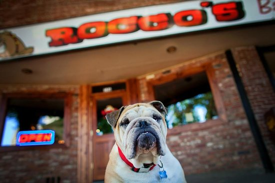 Rocco's Bar and Grill: Rocco's