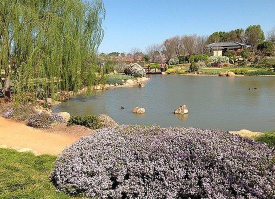 Shoyoen Japanese Garden