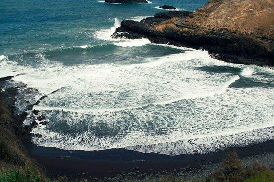 Madeira Surf Camp : Spot
