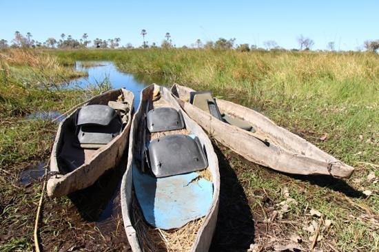 Delta Camp: Mokoro