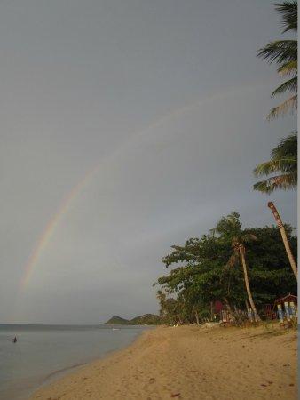 Health Oasis Resort: rainbow