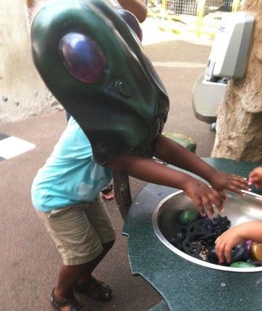 Kidspace Children's Museum : Being a bug