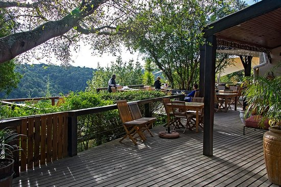 Hog Hollow Country Lodge: Breakfast on the deck