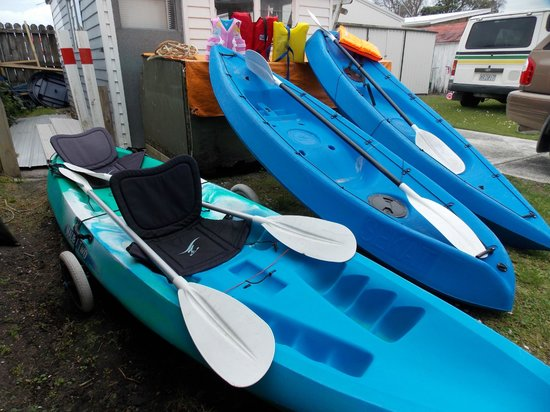 Whangateau Holiday Park : Enjoy some kayak fun in the local waters