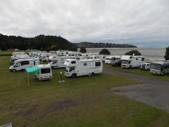 Whangateau Holiday Park: Caravan Club