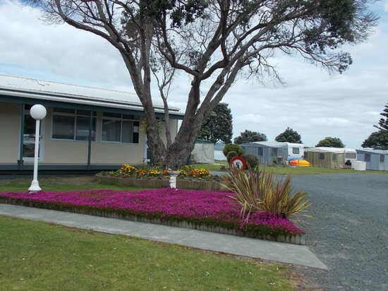 Whangateau Holiday Park: Tranquillity in the gardens