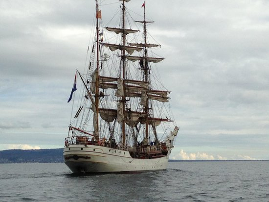 South Bay Eco Adventures: Majestic Tall Ship