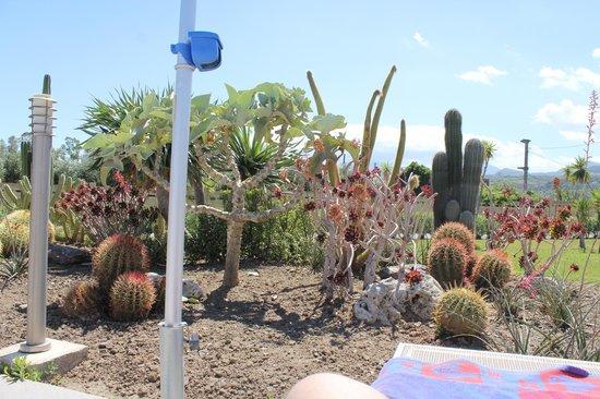 VOI Baia di Tindari Resort : giardino