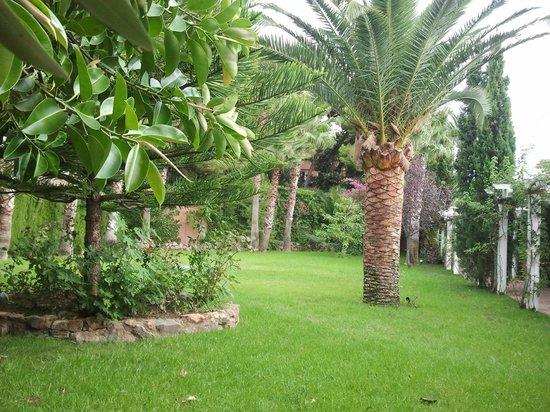 Thalasso Hotel El Palasiet: Jardines piscina inferior