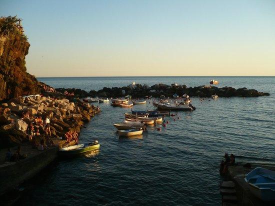 B&B La Terrazza: The Harbour
