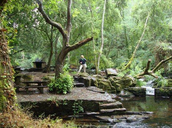 Carballo, España: Refugio de Verdes