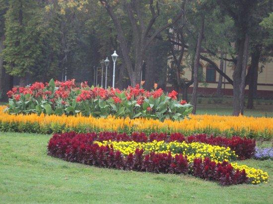 Garni hotel Prezident: gardens in front of hotel