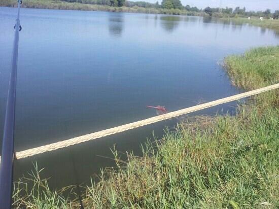 Agricampeggio Lago Le Tamerici: lago le Tamerici