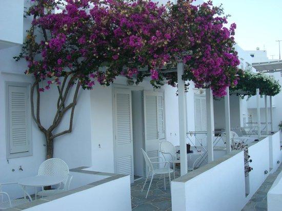 Alexandros Hotel : Το δωμάτιό μας