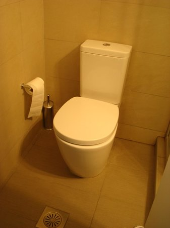 Alexandros Hotel: Η τουαλέτα