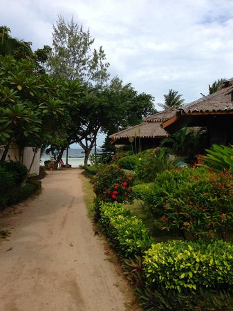 Palm Leaf Resort: View from our bungalow (113)