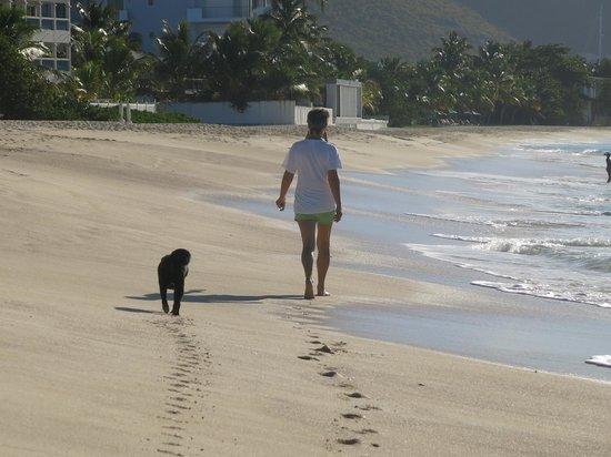 The Azure Hotel: Beach Walks