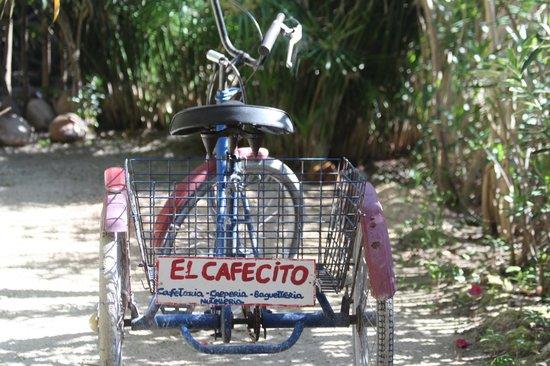 El Cafecito: February, 2013