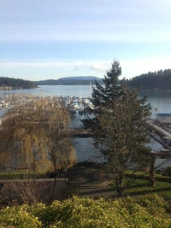 Friday Harbor House: View from back of Inn. We could also see this from our window.