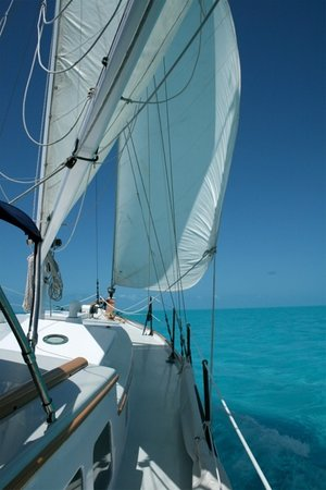 East End Charters LLC-Day Tours: sail Key West and Bahamas winter 2014