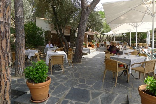 Hotel Playa Sol : Lunching by the pool