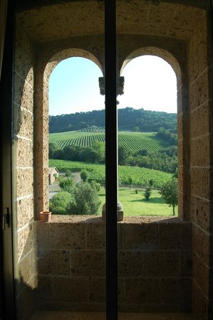 Locanda Palazzone: View from suite.