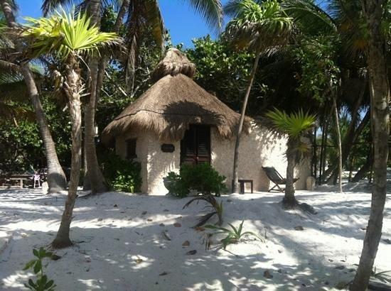 Playa Esperanza: Celia cruz cabaña dos personas frente al mar baño integrado
