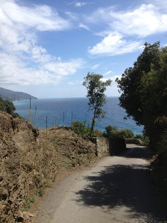 B&B Ulivo: View on road to town