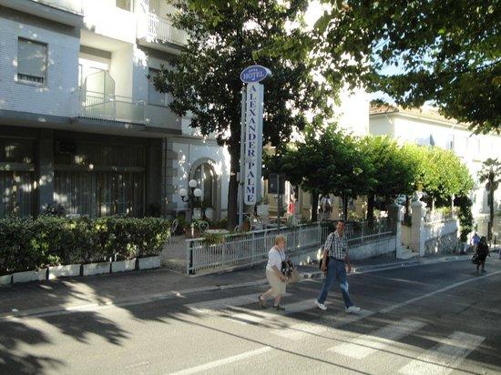 Hotel Alexander Palme: Front patio