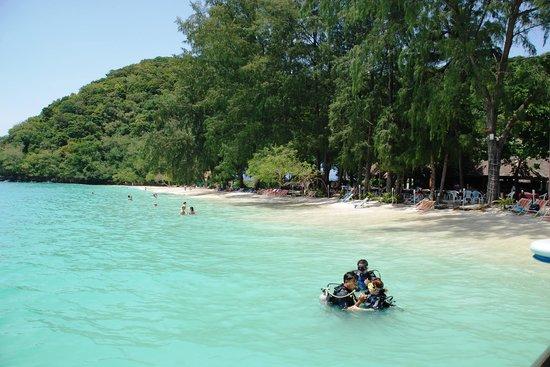 Coral Island Resort Beach