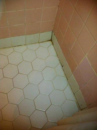 Grove City Motel : Shower mold