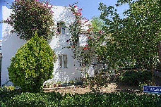 Arya Aparthotel : pencereden manzarası