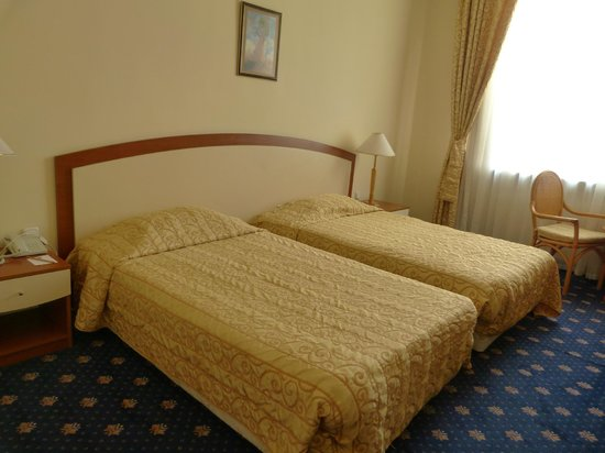 Ramada Plovdiv Trimontium : Habitación