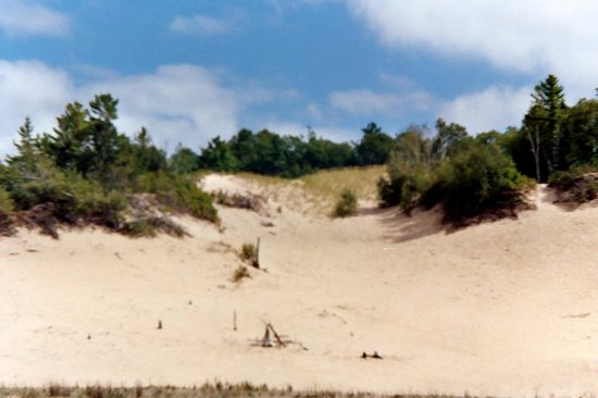 Wilderness State Park: The dunes in Bliss Twp.